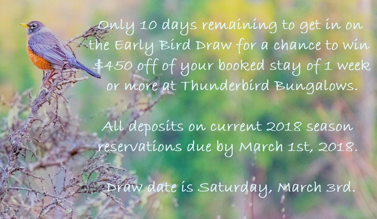 early bird draw